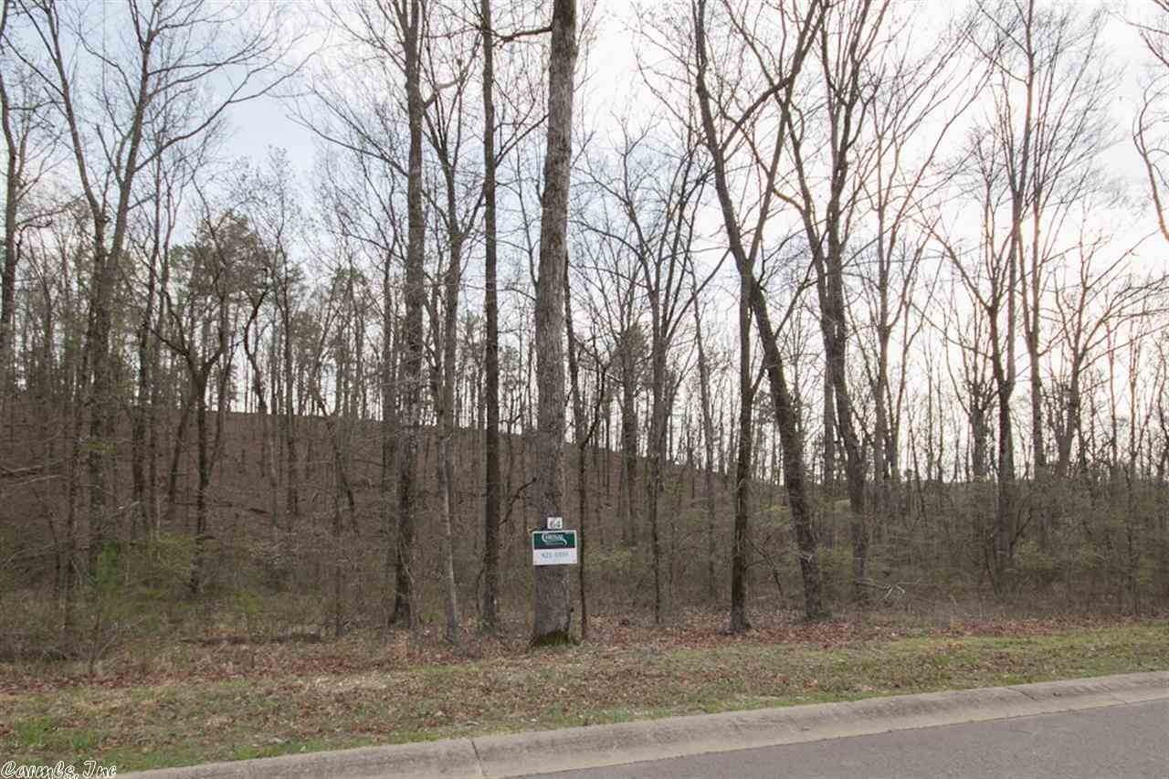 Vacant land for Sale at 43 Trotter Lane Little Rock, Arkansas 72223 United States