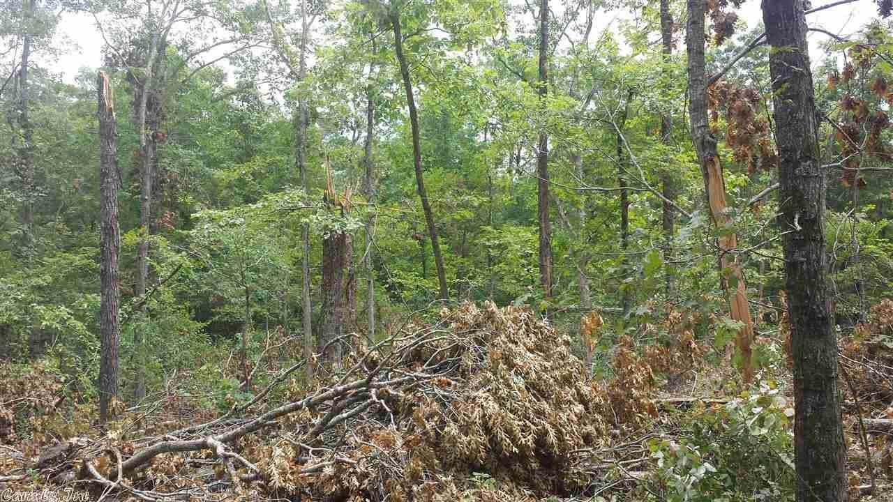 Vacant land for Sale at independence county Pleasant Plains, Arkansas 72568 United States