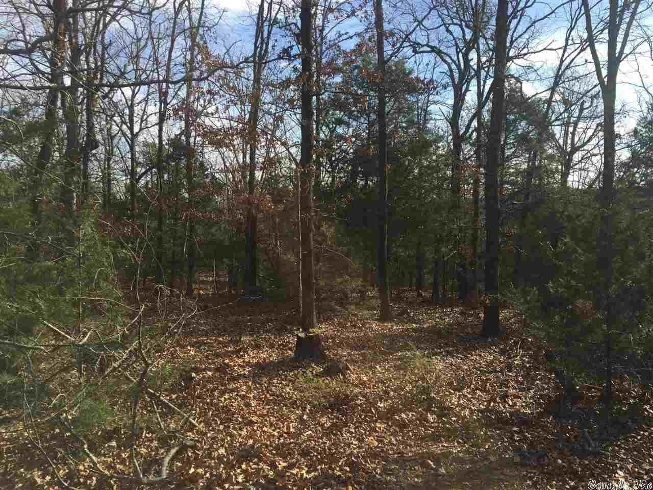 Vacant land for Sale at lot 65 Cranford acres hwy 5 Romance, Arkansas 72136 United States