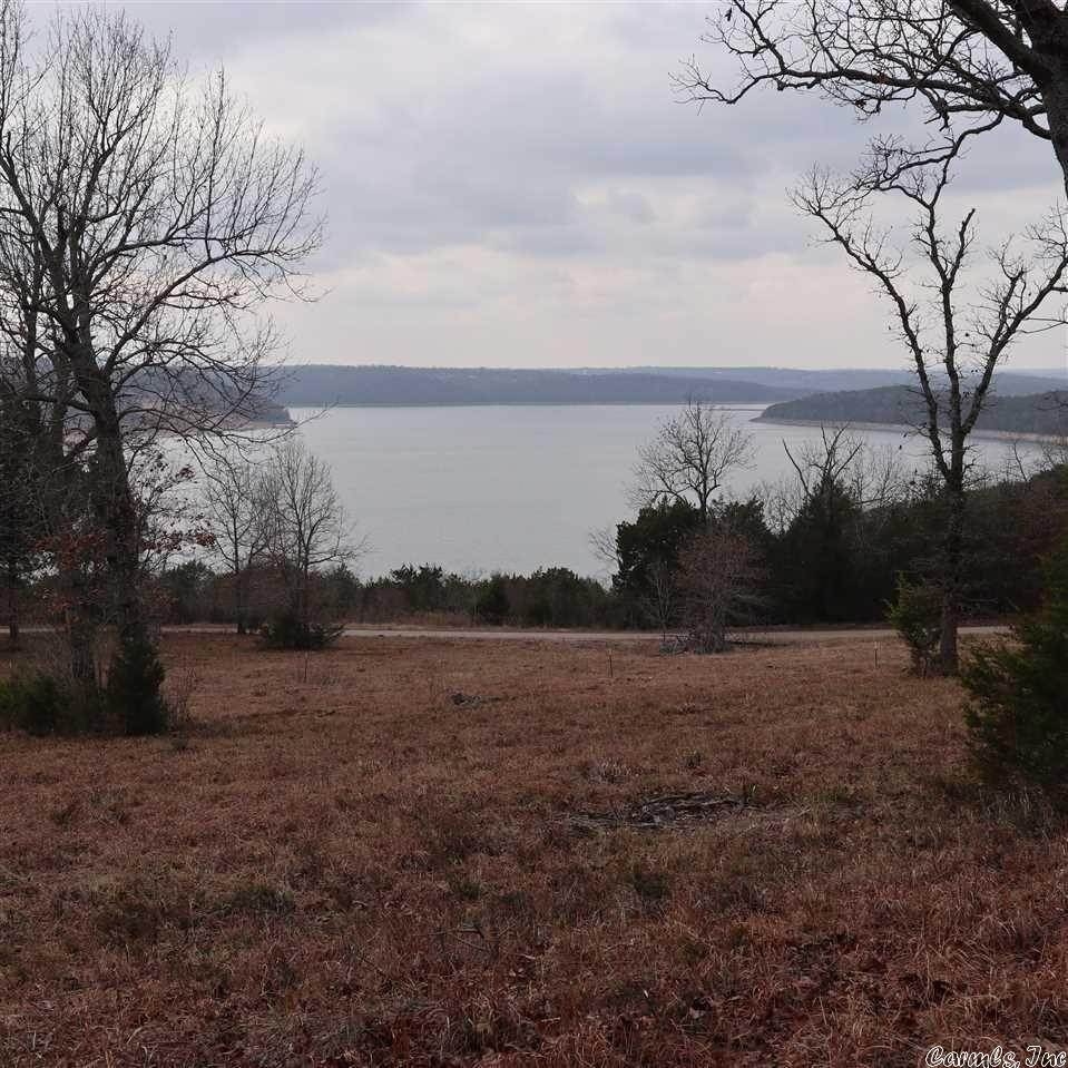 Vacant land for Sale at TBD Co Rd 815A Gamaliel, Arkansas 72537 United States