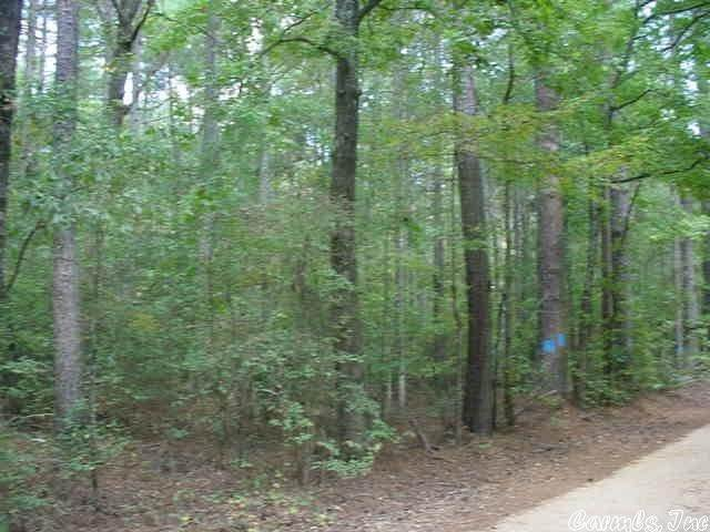 Vacant land for Sale at Dexter Lane Poyen, Arkansas 72104 United States