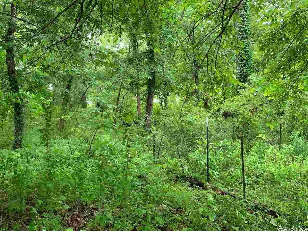 Vacant land for Sale at Harding Boulevard Cotter, Arkansas 72626 United States