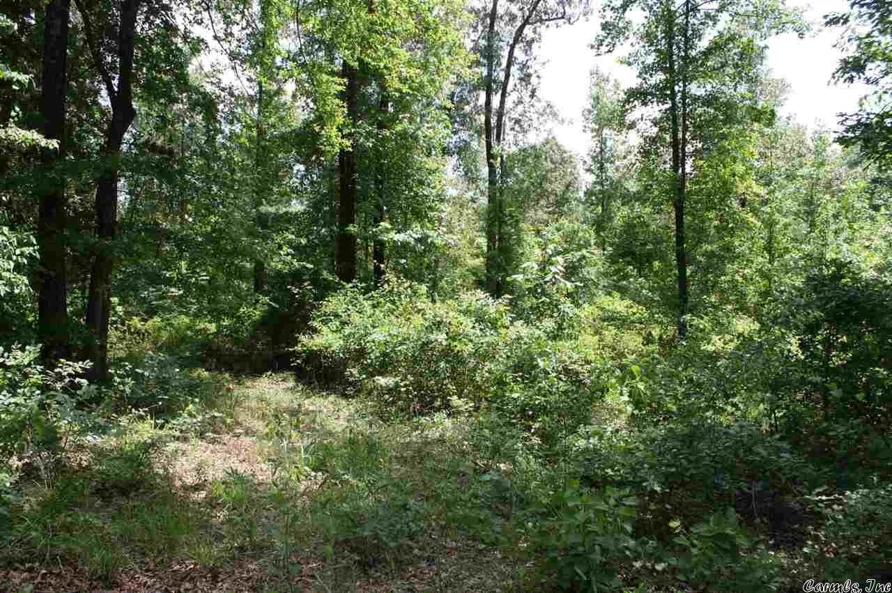 Vacant land for Sale at Coulter Lane Nashville, Arkansas 71852 United States
