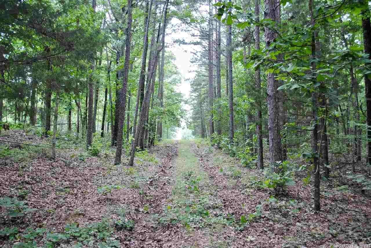 Vacant land for Sale at Atoka Drive Bee Branch, Arkansas 72013 United States
