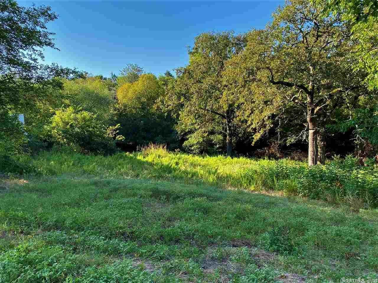 Vacant land for Sale at Abby Lane Cotter, Arkansas 72626 United States