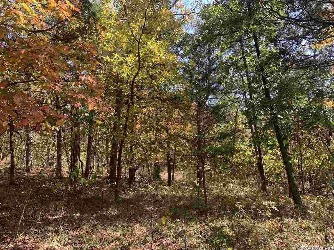 Vacant land for Sale at 46 West Thomas Circle Holiday Island, Arkansas 72631 United States