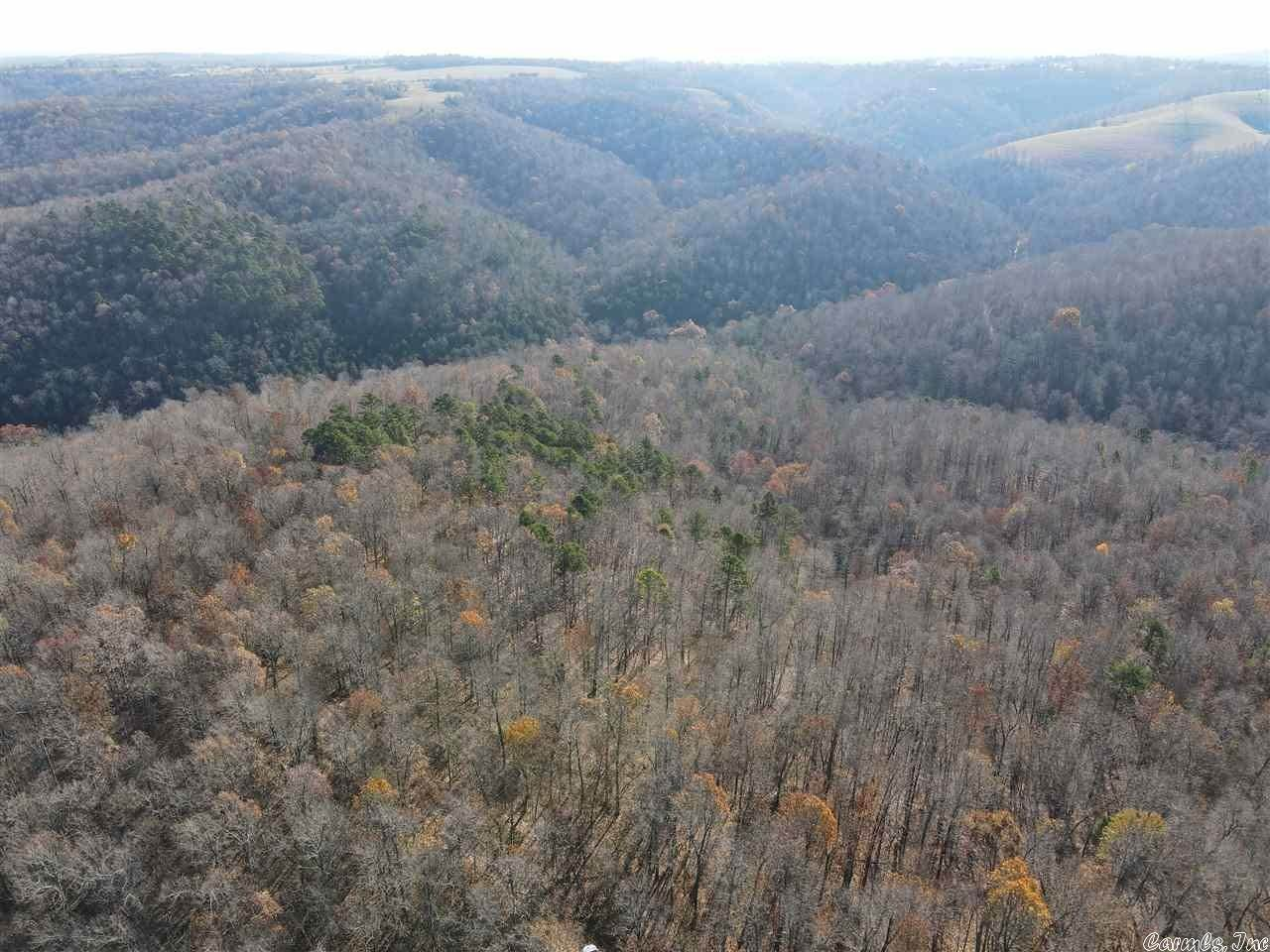 Vacant land for Sale at Searcy 160 Friendship Lane Big Flat, Arkansas 72617 United States