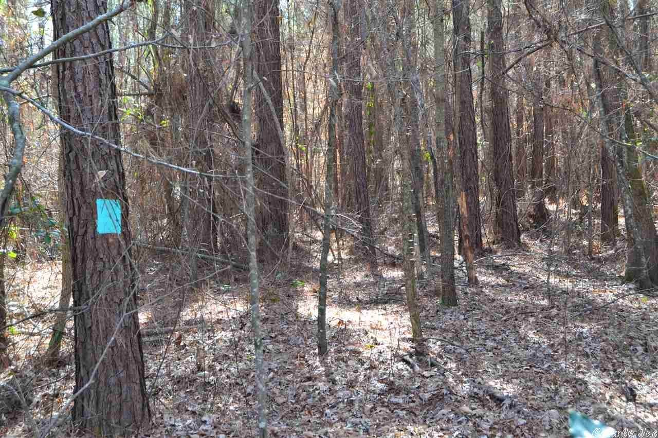 Vacant land for Sale at County Rd 73 Fordyce, Arkansas 71742 United States