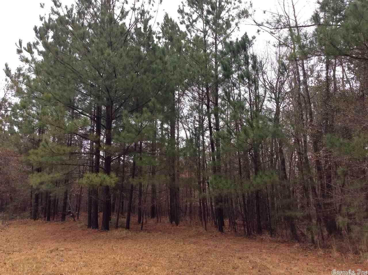 Vacant land for Sale at Ferris Mtn Road Fordyce, Arkansas 71742 United States