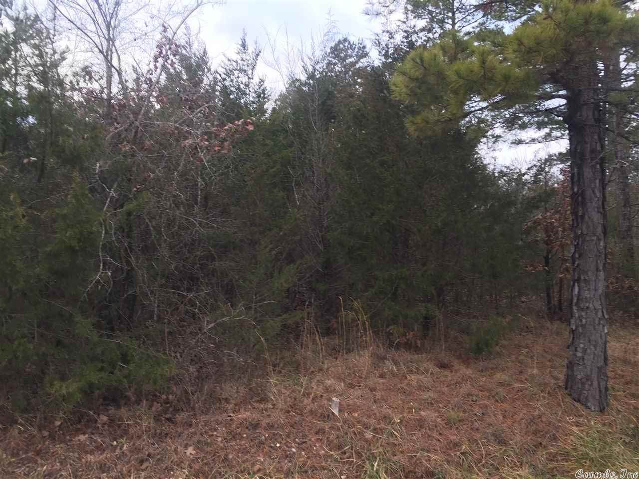 Vacant land for Sale at Old Dolph Road Dolph, Arkansas 72528 United States