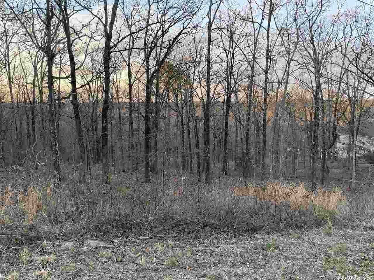 Vacant land for Sale at 13 Boulder Pass Road Concord, Arkansas 72032 United States