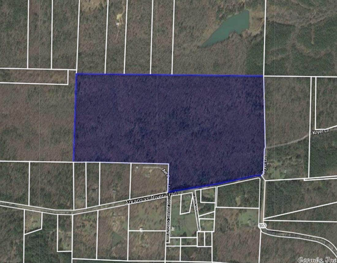 Vacant land for Sale at Highway 300 Roland, Arkansas 72135 United States